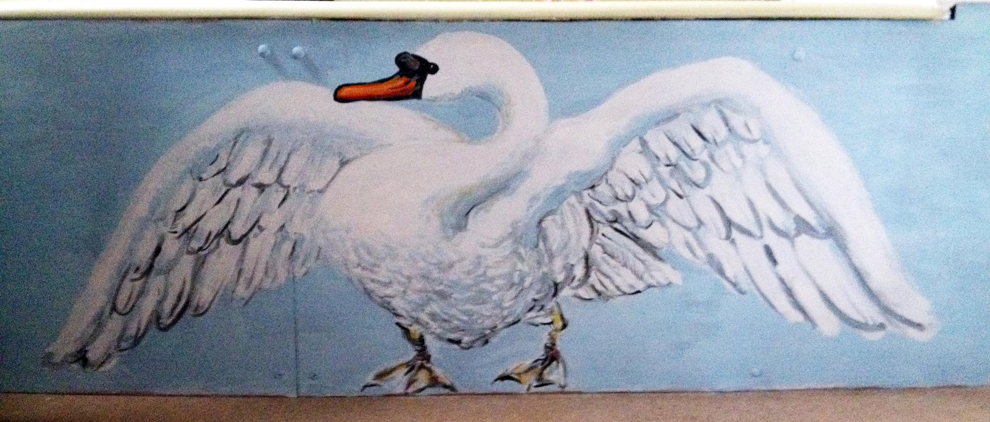 Swan On Bath